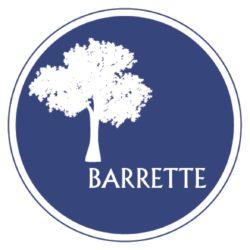 BARRETTE.jpg