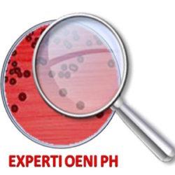 EXPERTI-OENI-PH.jpg